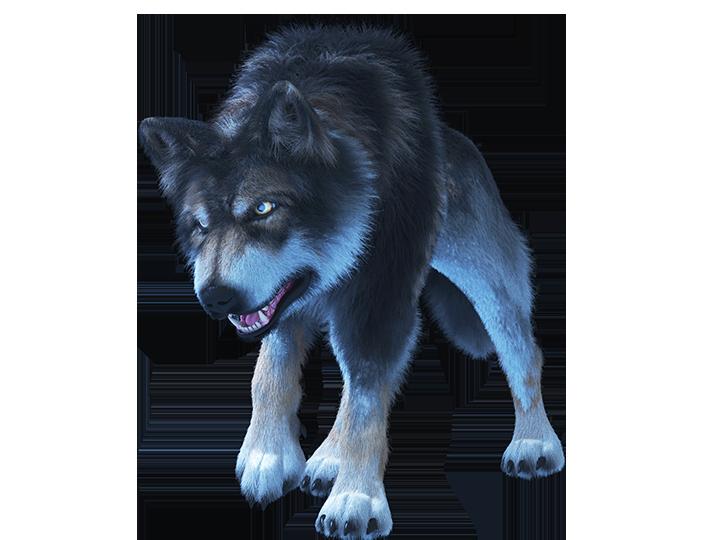 Mystic Wolf Hero Image Inner 2